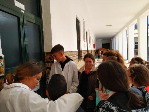 Ciencia31